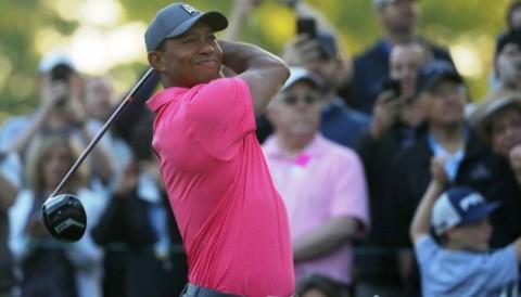 Khán giả vây kín sân Quail Hollow xem Tiger Woods đánh tập