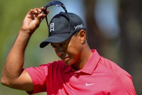 Các thay đổi về swing của Tiger Woods từ năm 1992 qua đánh giá của các huấn luyện viên.