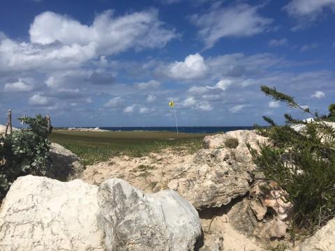 Golfer chuyên nghiệp mất 32 quả bóng tại Web.com Tour